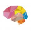 brainapp.png