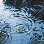 rainapp1.jpg