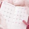 かわいいカレンダーアプリ