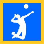 バレーボールゲームアプリ
