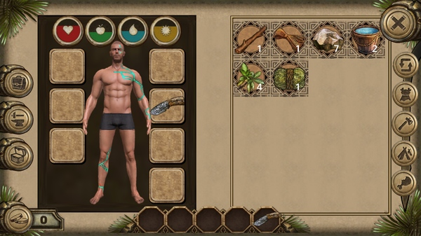 Survival Island: Evolve5