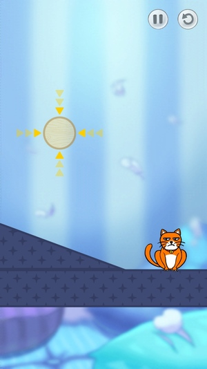 Hello Cats!3