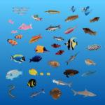 魚ゲームアプリ