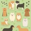 犬育成ゲームアプリ