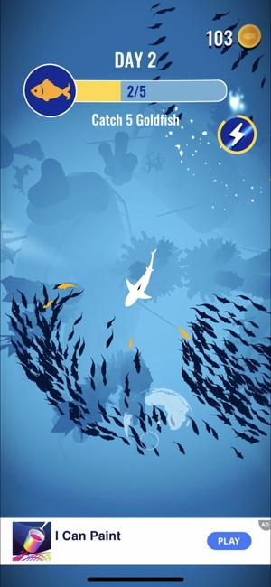 Shoal of fish5