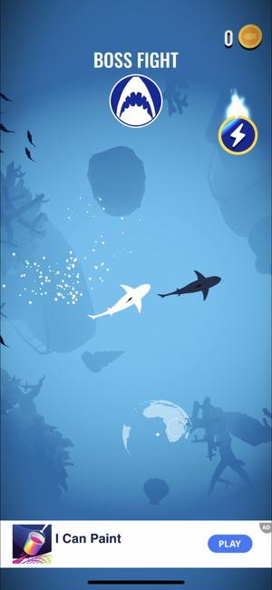 Shoal of fish7